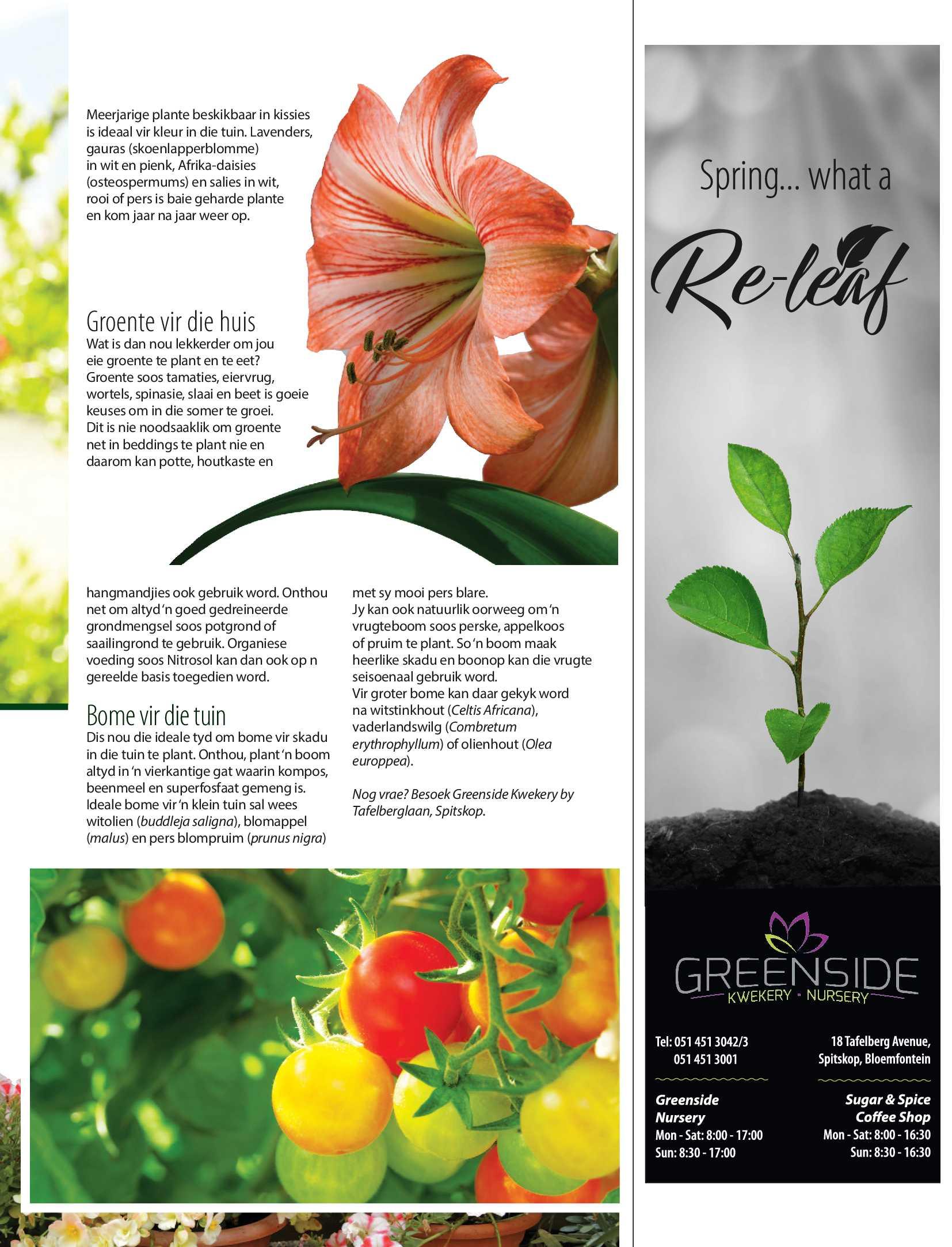 get-bloemfontein-september-2018-epapers-page-31